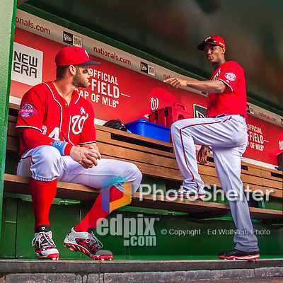 21 June 2015: Washington Nationals outfielders Bryce Harper (left) and Michael Taylor chat in the dugout prior to a game against the Pittsburgh Pirates at Nationals Park in Washington, DC. The Nationals defeated the Pirates 9-2 to sweep their 3-game weekend series, and improve their record to 37-33. Mandatory Credit: Ed Wolfstein Photo *** RAW (NEF) Image File Available ***