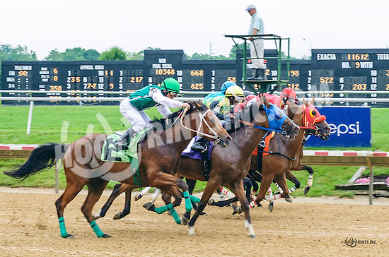 Harlington Romance winning at Delaware Park on 6/16/16