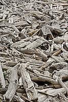 Weathered driftwood, Bandon Beach, Oregon