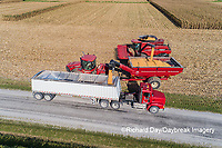 63801-12302 Unloading corn into truck during harvest-aerial  Marion Co. IL