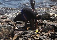 CABO DE SANTO AGOSTINHO, PE, 23.10.2019 - VAZAMENTO-ÓLEO - Movimentação na praia Itapuama em Cabo de Santo Agostinho no Estado de Pernambuco nesta quarta-feira, 23. Voluntários trabalham na retirada de óleo da praia. (Foto: Jean Nunes/Brazil Photo Press)