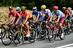 The peloton including Olympic Champion Greg Van Avermaet (BEL) CCC Team during Stage 7 of the 2019 Tour de France running 230km from Belfort to Chalon-sur-Saone, France. 12th July 2019.<br /> Picture: ASO/Alex Broadway | Cyclefile<br /> All photos usage must carry mandatory copyright credit (© Cyclefile | ASO/Alex Broadway)