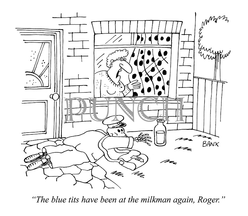 """The blue tits have been at the milkman again, Roger."""