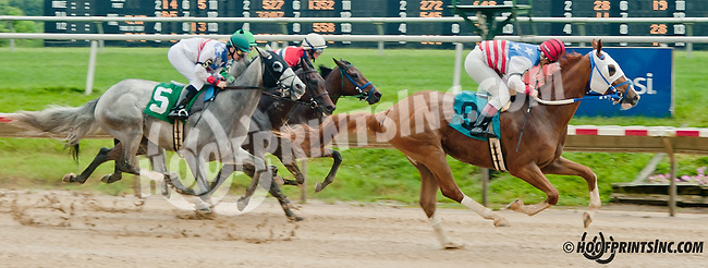 Longshore with Ms. Jessica Marcialis aboard winning The International Ladies Fegentri Race at Delaware Park on 6/10/13