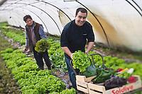 Europe/France/Bretagne/56/Morbihan/Baden:   Thierry Séchelles, restaurant: Le Roscanvec à Vannes et Betty Maheo - Agricultrice  bio - Les Bio de Baden Ferme Biologique