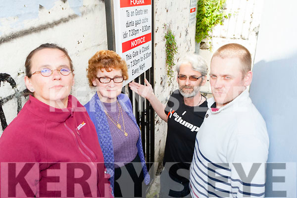 Residents from Clover Lane, Killarney Dorett Fuellgraf, Eileen O'Sullivan,  Paul McGough and Timothy O'Connor who are asking the council to lock the gate at Clover Lane at night t stop the anti social behavior down their lane