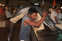A porter delivers a 200-pound pirarucú to a fishmonger at the Mercado Moderno in Manaus, Brazil, Monday, January 9, 2006. Fishmongers from the city's public markets arrive in the wee hours of the morning to buy their stocks for the day directly from the boats. The Amazon river system boasts more different species of fish than the Atlantic Ocean, but as population increases, so does the pressure on fish stocks in the vast river. The air-breathing pirarucú is under so much pressure that there is a ban on fishing. Poachers still deliver the goods. (Kevin Moloney for the New York Times)