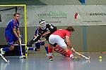 Mannheimer HC - TSV Mannheim 12.12.2015