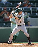 Baylor 2B Raynor Campbell prepares to bat against Texas on Saturday May 3rd, 2008. Photo by Andrew Woolley / Four Seam Images.