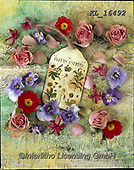 Interlitho-Alberto, FLOWERS, BLUMEN, FLORES, photos+++++,blossoms,KL16492,#f#, EVERYDAY