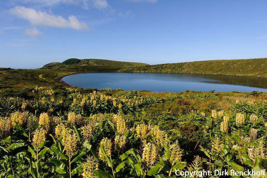 Caldeira Rasa auf der Insel Flores, Azoren, Portugal