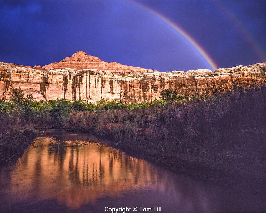Rainbow in Salt Creek, Canyonlands National Park, Utah Needles District, Near Peekaboo Spring