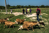 ARRIAGA, MEXICO - NOVEMBER 08: The group of migrants walk through farm land to avoid police checkpoints on the road between Arriaga to Chahuites on the 8th of November, 2015 in Arriaga, Mexico. <br /> <br /> Daniel Berehulak for The New York Times