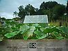 Plot 53 on the allotment.<br /> <br /> Stock Photo by Paddy Bergin