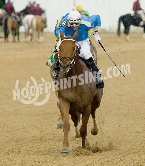 Sombreado winning. at Delaware Park on 10/27/12..