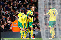 Josh Murphy of Norwich City celebrates his goal during the Carabao Cup match between Arsenal and Norwich City at the Emirates Stadium, London, England on 24 October 2017. Photo by Carlton Myrie.