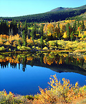 USA; California; Sierra Nevada Mountains.  Autumn colors reflecting in a Beaver Pond