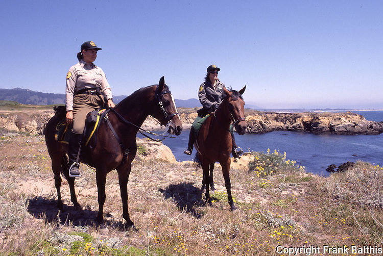 volunteer horse patrol at Ano Nuevo State Park