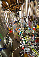 NoDa  Community - NoDa Brewing Company located on Davidson Street in the Charlotte's NoDa Community. Visitors to the brewery can sip on a cold brew while getting an insiders view of the stainless steel brew kettles and fermenters onsite.<br /> <br /> - Billy Howle, an employee at NoDa Brewing Company keeps the filling station running on  a batch of Hop, Drop 'N Roll IPA (India Pale Ale) at the NoDa company.<br /> <br /> Charlotte Photographer - PatrickSchneiderPhoto.com