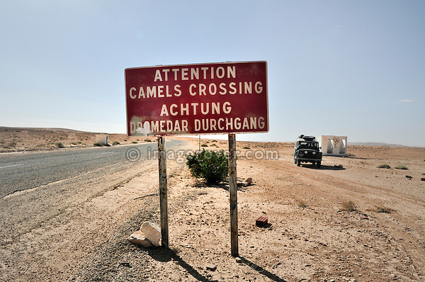 Africa, Tunisia, between Ksar Rhilane and Douz. Road sign warning of camels crossing the road.