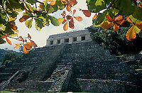 One of the Mayan Pyramids in Palenque