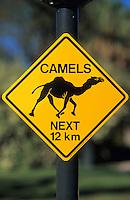 Océanie/Australie/South Australia/Australie Méridionale: Panneau signalant la présence de dromadaires