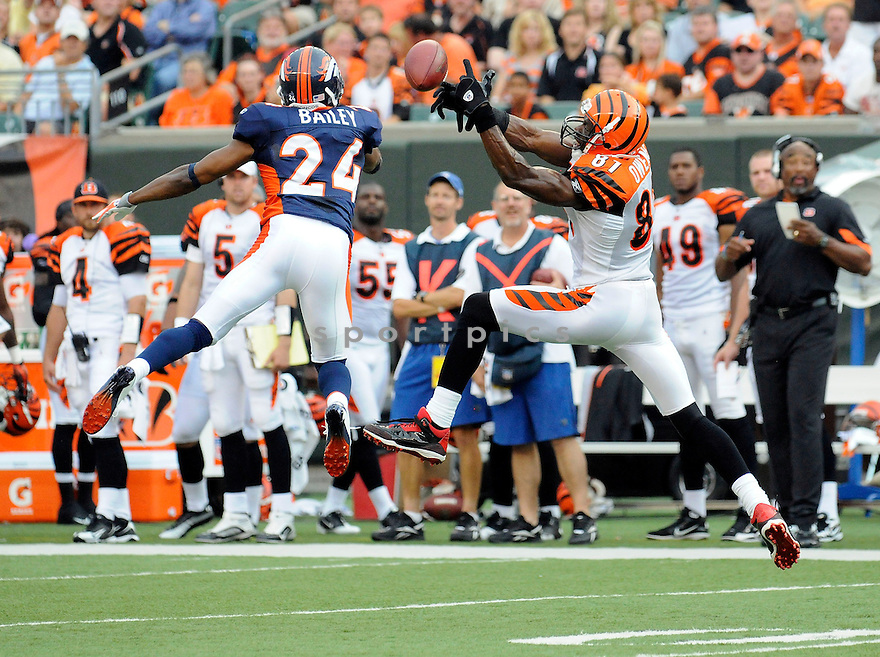 TERRELL OWENS, of the Cincinnati Bengals, in action during the Bengals game against the Denver Broncos at Paul Brown Stadium in  Cincinnati, OH on August 15, 2010.  The Bengals won the game 33-24..