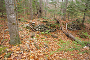 Remnants of a stone foundation along the Beebe River Road in Campton, New Hampshire USA. This area was part of the Beebe River logging Railroad, which operated from 1917-1942.