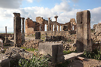 Entrance to a house in the foreground, with the Roman Basilica, 217 AD, behind, used as courts of justice and city governance, with its colonnaded facade which lined the Forum or marketplace, Volubilis, Northern Morocco. A pair of storks sit on a nest atop one of the columns. Volubilis was founded in the 3rd century BC by the Phoenicians and was a Roman settlement from the 1st century AD. Volubilis was a thriving Roman olive growing town until 280 AD and was settled until the 11th century. The buildings were largely destroyed by an earthquake in the 18th century and have since been excavated and partly restored. Volubilis was listed as a UNESCO World Heritage Site in 1997. Picture by Manuel Cohen