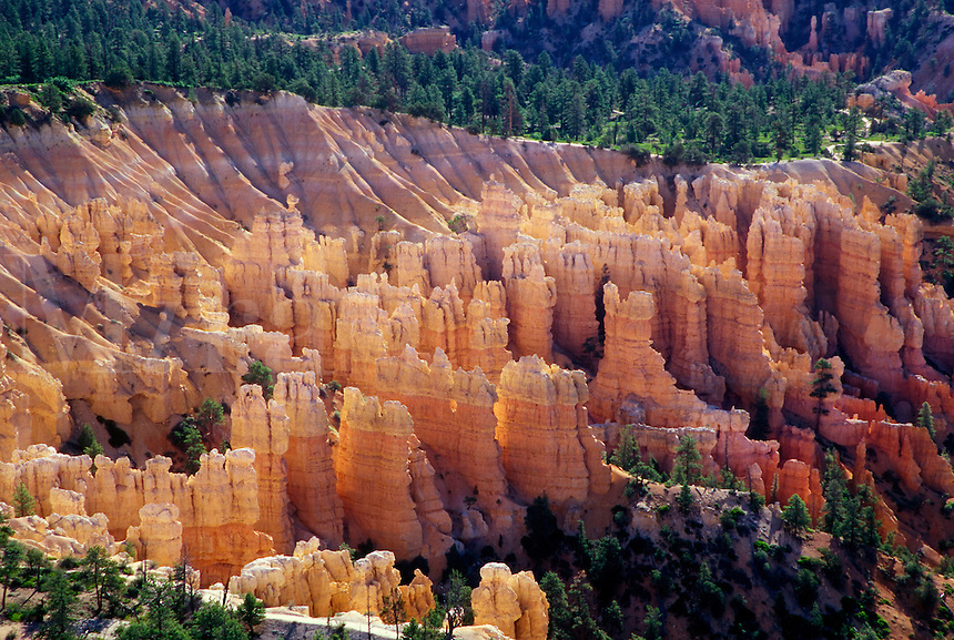 Columns and spires in Bryce Canyon National Park, Utah, US