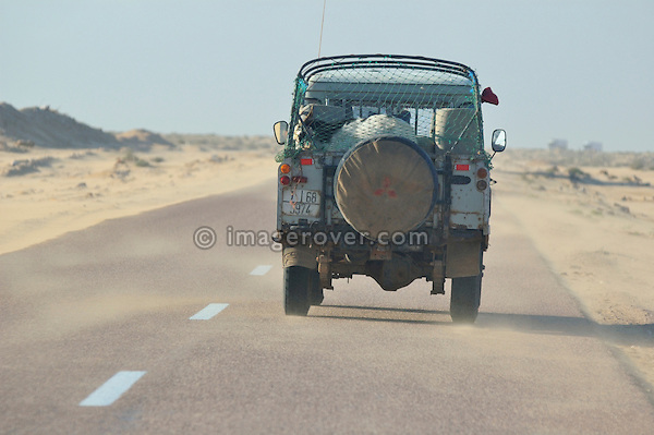 Africa, Morocco, Western Sahara, nr. Laayoune. A goat being transported by a Land Rover Santana Pick Up. --- No releases available. Automotive trademarks are the property of the trademark holder, authorization may be needed for some uses.