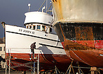 Port Townsend, Boat Haven Marina, classic wooden fishing boats, purse seiner St John II hauled out in boatyard, new coat of paint, shipwright, Pete, Jefferson County, Olympic Peninsula, Puget Sound, Washington State, Pacific Northwest, United States,