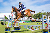 AUS-Molly Barry rides La Muso during the CIC3* Showjumping. 2017 AUS-Mitsubishi Motors Australian International 3 Day Event. Victoria Park, Adelaide. Sunday 19 November. Copyright Photo: Libby Law Photography