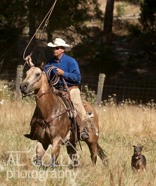 Ackerson Meadow off Evergreen Road near Yosemite National Park, August 14, 2010..Erickson Cattle Co. Cowboy Workshop 2010.  ..Photo by Al Golub/Golub Photography