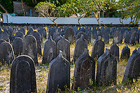 Maldives, Fenfushi Island, mass Muslim graves of over 700 people that died in the same year.