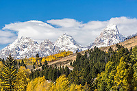 Autumn in the Gros Ventre Valley looking towards the Grand Teton Mountains of Jackson Hole Wyoming