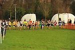 2015-12-13 Holly Run 06 TRo u15u17B