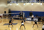 The Marymount Saints compete in a college volleyball game, in Arlington, Vir., on Saturday, Nov. 1, 2014.<br /> Photo by Cathleen Allison