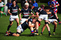 Action from the 2017 1st XV rugby Top Four co-ed semfinal between Rangitoto College and Feilding High School at Sports and Rugby Institute in Palmerston North, New Zealand on Friday, 8 September 2017. Photo: Dave Lintott / lintottphoto.co.nz