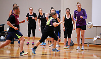 13.12.2017 Netball New Zealand's sponsor day in Auckland. Mandatory Photo Credit ©Michael Bradley.