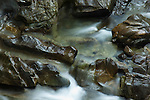 Detail, Falls of Bruar, near Blair Atholl, Perth and Kinross, Scotland, UK