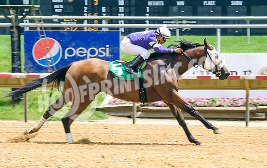Breezed Bayou winning at Delaware Park on 6/21/17