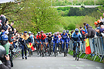The peloton climbs La Redoute during 105th edition of Li&egrave;ge-Bastogne-Li&egrave;ge 2019, La Doyenne, running 256km from Liege to Liege, Belgium. 28th April 2019<br /> Picture: ASO/Gautier Demouveaux | Cyclefile<br /> All photos usage must carry mandatory copyright credit (&copy; Cyclefile | ASO/Gautier Demouveaux)