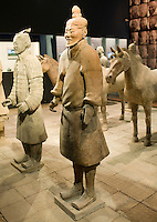 Terracotta warriors & horses on display in the Shaanxi History Museum, Xian, China