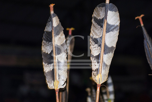 Altamira, Brazil. Encontro Xingu protest meeting about the proposed Belo Monte hydroeletric dam and other dams on the Xingu river and its tributaries. Arawete arrow flight feathers.