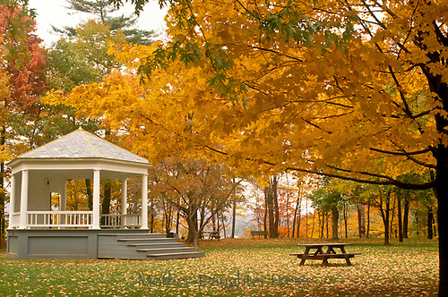 New England village green at the peak of fall foliage, Putney Vermont