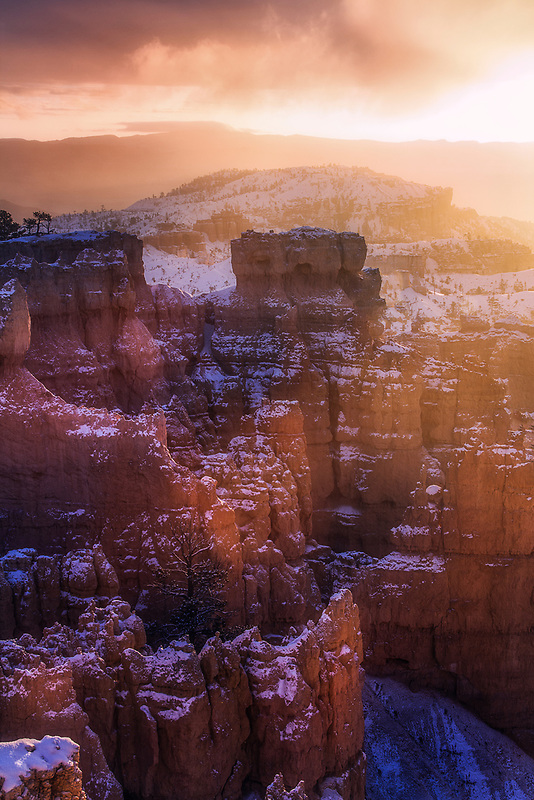 First light at Sunrise Point. Bryce Canyon National Park, UT