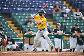 Siena Saints left fielder Chris Davignon (15) at bat during a game against the Pittsburgh Panthers on February 24, 2017 at Historic Dodgertown in Vero Beach, Florida.  Pittsburgh defeated Siena 8-2.  (Mike Janes/Four Seam Images)
