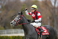 FUNABASHI,JAPAN-FEBRUARY 25: Win Bright,ridden by Masami Matsuoka, after winning the Nakayama Kinen at Nakayama Racecourse on February 25,2018 in Funabashi,Chiba,Japan (Photo by Kaz Ishida/Eclipse Sportswire/Getty Images)