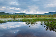 Elbow Pond during the summer months in Woodstock, New Hampshire. Species of fish in this pond include chain pickerel, yellow perch and smallmouth bass. This area was part of the Gordon Pond Railroad, which was a logging railroad in operation from 1907-1916.